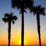 Bobilutleie Orlando, Florida, USA - leie bobil Orlando, Florida